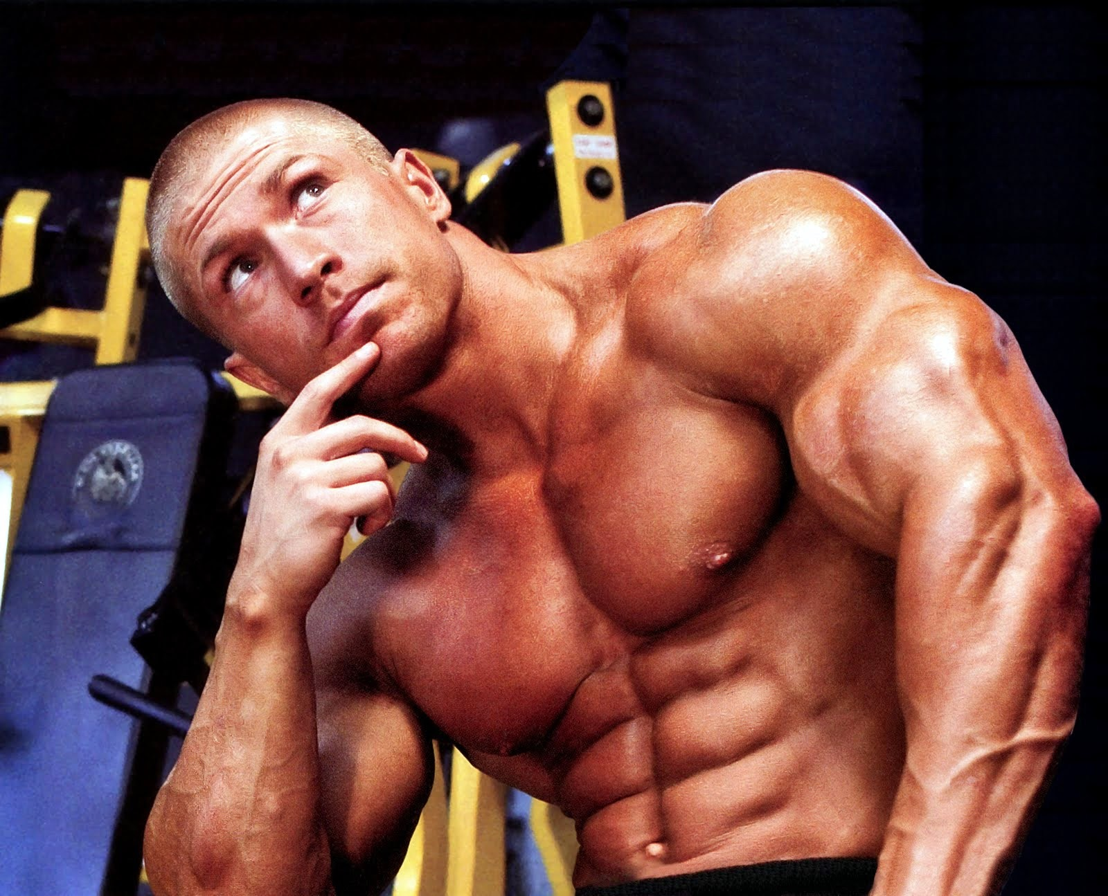 bodybuilding-photo