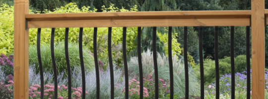belly balusters.